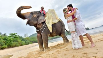 Krabi Beach Elephant Marriage