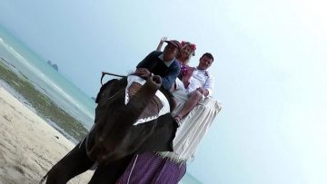 Samui Beach Elephant Marriage