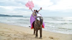 Phuket Elephant Marriage Package