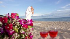 Phangan Beach Elephant Wedding