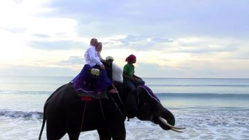 Phuket Elephant Wedding Package