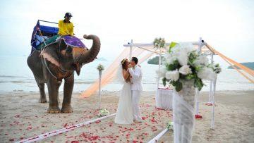 Krabi Beach Elephant Wedding Package