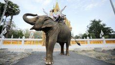 Phuket Same-Sex Buddhist Blessing Package