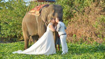Koh Lanta Elephant Marriage
